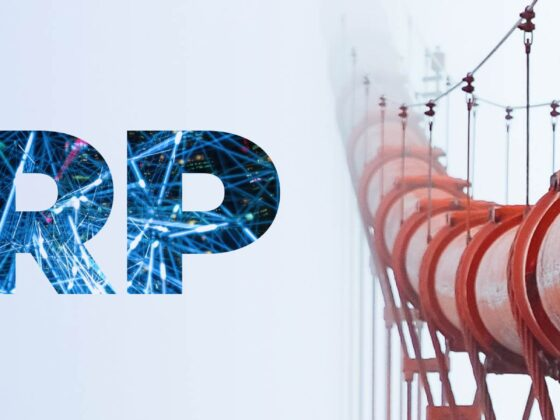 ERP in the Oil and Gas Industry